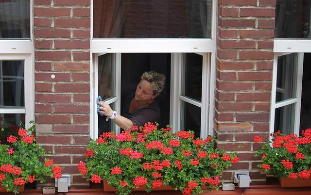 mytí okna